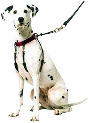Hund Halfter-non-pull keine Erstickungsgefahr dank Sicherer Humane Pet Training Halfter Geschirr, Easy step-in Weste Kragen Halfter für Kontrolle, abnehmbare Fessel und Sherpa Ärmeln, patentierte Hund Pull Control Technologie von Sporn -