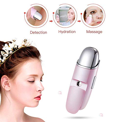 TEN-G 3 in 1 Facial Mist Sprayer Portable Skin Spray Hydrating Nano Vibration Mini Steamer Rechargeable Humidifier Moisturizer Face Massager for Home Office Car Outdoor Travel(Pink) - Hydrating Facial Mist