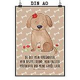 Mr. & Mrs. Panda Poster DIN A0 Hund Hundedame - Hund, Hunde, Haustiere, Hunderasse, Tierliebhaber XXL Poster, Poster groß, Wandposter, Bild, Wanddeko, Wandbild