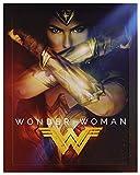 Wonder Woman Steelbook [Blu-Ray]+[Blu-Ray 3D] [Region Free] (Deutsche Sprache. Deutsche Untertitel)
