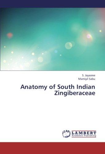 Anatomy of South Indian Zingiberaceae