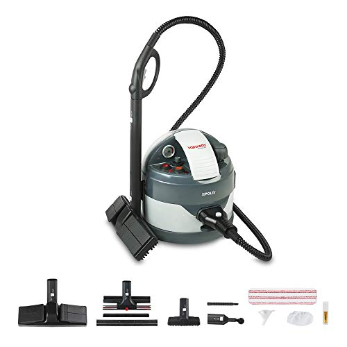 Polti PTEU0260 Vaporetto Eco Pro 3.0 Nettoyeur Vapeur, 4,5 Bar, 2000 W, 1.3 liters, Gris