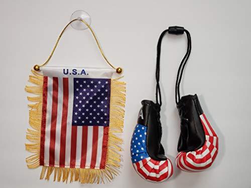 Rainbow Trading USA Flagge und Mini Boxhandschuhe Combo Auto Rückspiegel Büro Dekor