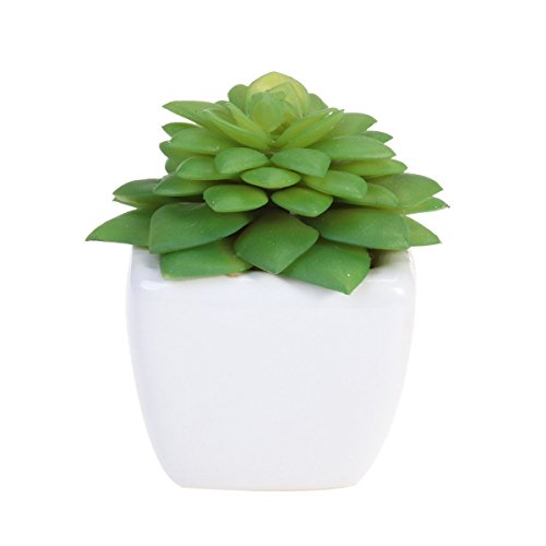 winomo Cube Modern getopft grün künstliche Sukkulenten Mini Fake Blumentopf für Indoor Outdoor Decor