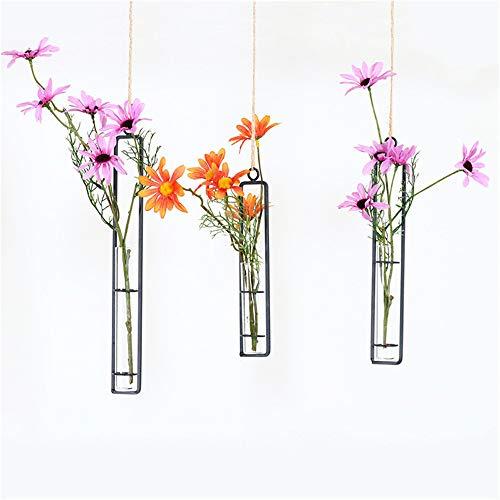 TJW Glasvase, Transparentes Glas, Reagenzglas, Blumenvase, Hängen Blumen-Übertopf für Zuhause, Café, Party, Büro, Eisen/Glas, durchsichtig, S (Glas Reagenzgläser Loch)