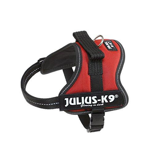 Julius-K9, 162BOR-M, K9-Powergeschirr, Größe: Mini, kastanie