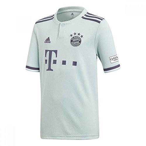 adidas FC Bayern Trikot für Herren L Ash Green, Trace Purple, Blanc