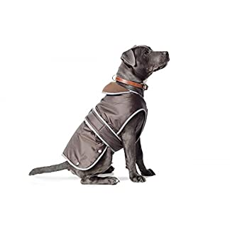 Ancol Muddy Paws Stormguard Coat Chocolate Small ( Length 30cm/ to fit girth 44-56cm) 1