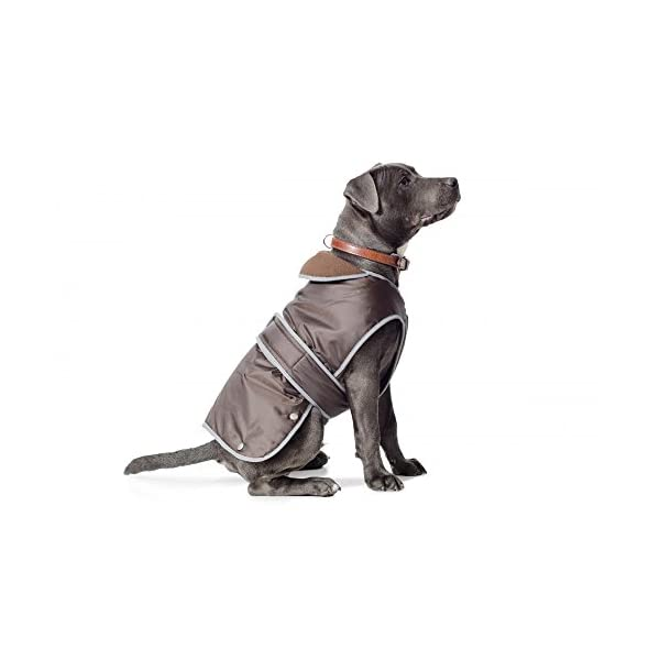 Ancol-Muddy-Paws-Coat-and-Chest-Protector-S-Chocolate