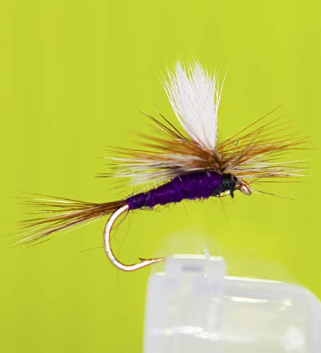 Outdoor Planet All-Time Favorites Forellen-Sortiment Trockenfliegen/Nymph/Caddis/Mayfly/Locker/Nassfliegen Forellenfliegenfischen, 12 Adams Purple Parachute -