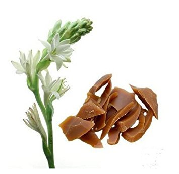 Tuberose Floral Wax 100% Pure 2oz