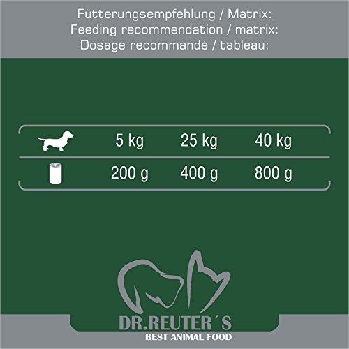 Dr. Reuter's Hundefutter Wild mit Spätzle und Preiselbeeren, 6er Pack (6 x 400 g) - 6