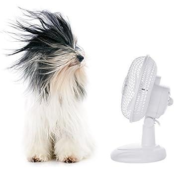 Pro Elec, ventilateur électrique à deux vitesses avec inclinaison ajustable de 15,2cm, ventilateur portable pour la maison ou le bureau, blanc