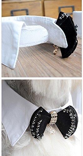 Smile YKK Schleife Muster krawatte Hundehalskette Hundefliege Schwarz L - 2