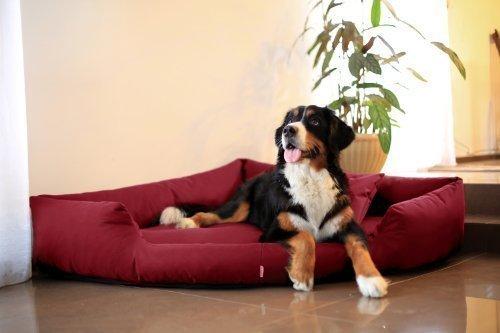 Artikelbild: TR3-04 Hundebett TRIVIA Eckbett Eckhundebett Hundesofa Hundebett Gr. M 80cm Bordeaux