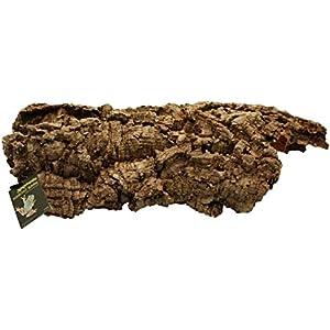 Komodo Habitat Bellen - Medium