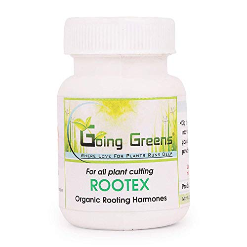 Going Greens Rootex Rooting Hormone Powder for All Plants (25 GM)