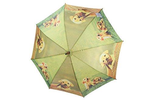 rain-street-folding-umbrella-dogs-and-friends-automatic-wind-resistant-blue