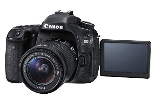 Canon EOS 80D 24.2MP Digital SLR Camera (Black) with EF-S 18-55mm f/3.5-5.6 Image Stabilization STM Lens Kit