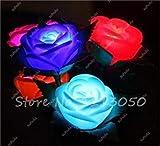 1: Magico Luminous Rose seme notte in vista del più bello bonsai Fiore Desk Mini seme di fiore in vaso di 150 PCS/Packages 1 di farmerly