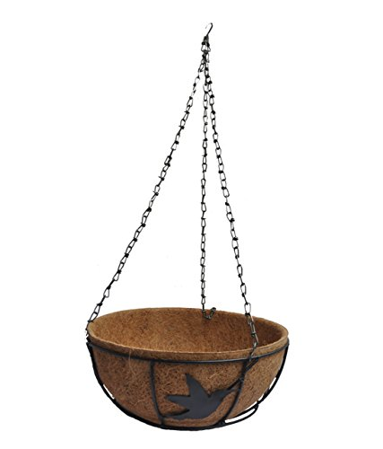 Ankur Hanging Basket With Coir Lining