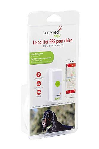 Weenect Dogs 2 - El localizador GPS para Perros