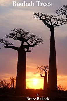 Baobab Trees (English Edition) par [Bullock, Bruce]
