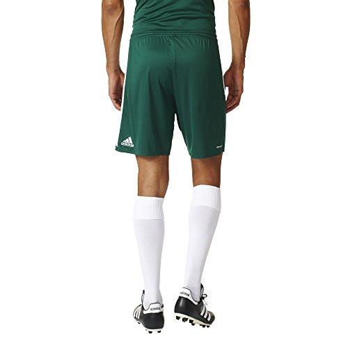 adidas Herren Regista 16 Shorts Grün / Weiß