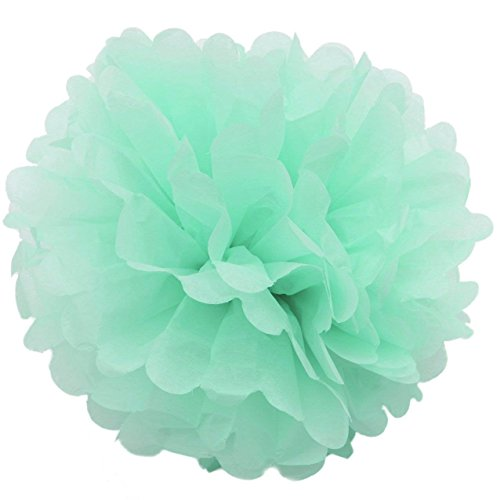 mpom 5er/10er 25cm Mixed Papier Blumen PomPoms Zum Aufhängen Seidenpapier schöne Dekor für Geburtstag Hochzeitsfest Basteln Babyshower Dekoration Feier Party Baby-Duschen Brautduschen Wohnungdeko (5Stück, Mint grün) (Mint-grün-dekor)