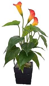 Fourwalls Artificial Polyurethane Real-Touch Calla Lily Plant (40 cm, Orange)