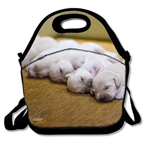 Lunchbox Kreis Lunchtasche für Erwachsene Herren Frauen, wasserabweisend Lecksicher Thermo Bento Tasche für Arbeit/Schule/Picknick Einheitsgröße Cute White Pug14