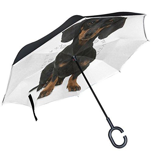ALAZA Dackel auf weißem Hintergrund seitenverkehrt Regenschirm Double Layer Winddicht Rückseite Regenschirm -