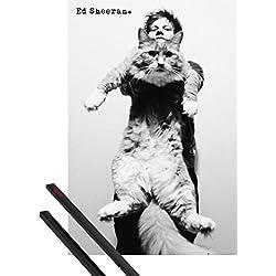 Póster + Soporte: Ed Sheeran Póster (91x61 cm) The A Team, Gato Y 1 Lote De 2 Varillas Negras 1art1®