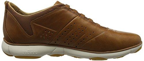 Geox U Nebula A, Sneakers basses homme Marron (Cognacc6001)
