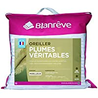 Blanrêve LOPLUHP006060  Lot de 2 Oreillers Plume Traditionnels 60 x 60