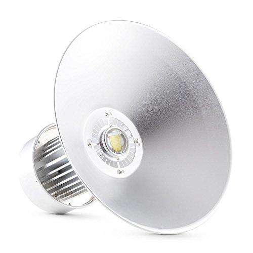 Lightcraft High Bright Fluter LED Hallenstrahler (100 Watt, großer Abstrahlwinkel, hoher Wirkungsgrad, niedriger Stromverbrauch, Aluminium) silber -