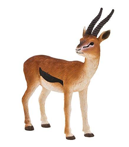 mojo-fun-thomson-gazelle