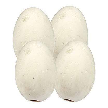 Wolseley 4 PACK - CHINA CHICKEN NEST EGGS Artificial Poultry Coop to Encourage Laying AND Tigerbox® Antibacterial Pen. 1