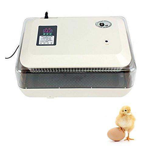 24 Eier Inkubator,Iglobalbuy automatisch Brutkasten Brutapparat Motorbrüter