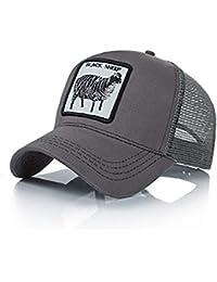 e61c059aae0bf Amazon.es  Gorras de béisbol - Sombreros y gorras  Ropa