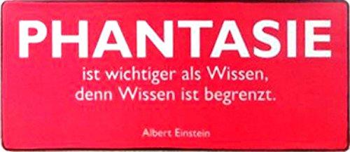 1art1 98129 Albert Einstein - Phantasie Ist Wichtiger Als Wissen Denn Wissen Ist Begrenzt Poster Blechschild 31 x 13 cm