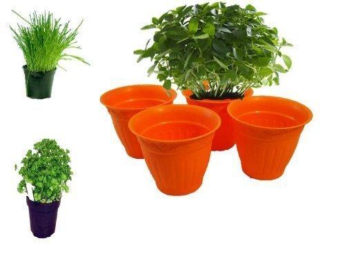 Kräutertopf Blumentopf Pflanzentopf für Kräuter und Blumen von Conny Clever® das 4er Set rund orange