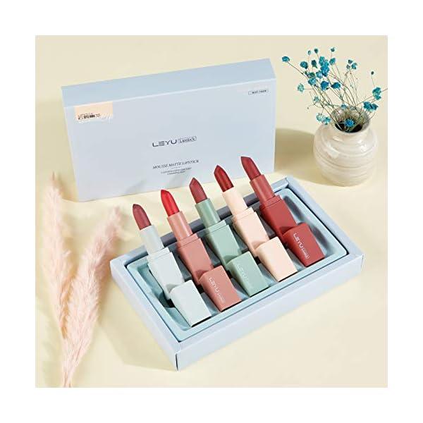 Onlyoily Lápiz labial, 5 colores mate de larga duración hidratante lápiz lápiz labial lápiz labial brillo Set