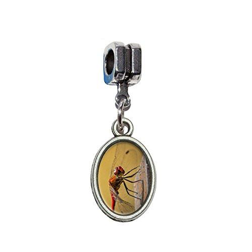 Red Dragonfly Italienisches europäischen Euro-Stil Armband Charm Bead–für Pandora, Biagi, Troll,, Chamilla,, andere