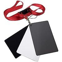 XXIAZHI,Fotográfico 18% Blanco Balance Fotómetro Impermeable Tarjeta Negro Blanco Gris Traje(Color:Multi,Size:1 Set)