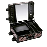 BIXINYAAN LED Trolley Cosmetic Case Makeup Travel Rolling Multifunctional Cosmetic case,USregulations