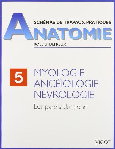 Myologie, angéiologie, névrologie. Les parois du tronc
