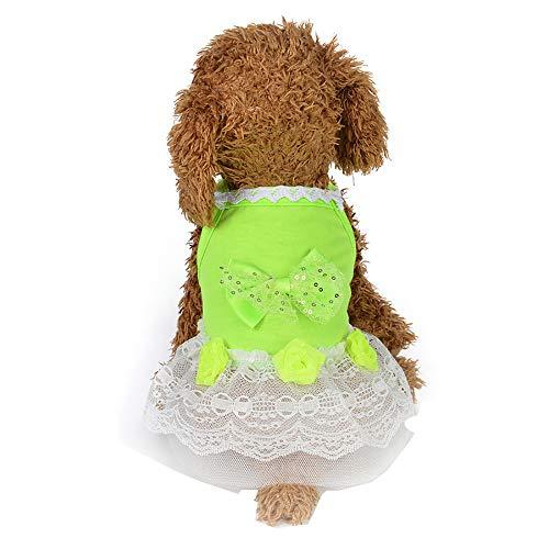 XXYsm Hunde Pullover Winter Hundebekleidung Hund Katze Tutu Kleid Spitze Rock Pet Welpen Prinzessin Kostüm Haustier Kleidung Grün XS/Büste: 24 cm