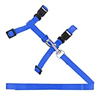 Cat, Rabbit Harness & leash, Nylon Traction Chest Strap, Adjustable up to 45cm, with quick release buckles - Blue
