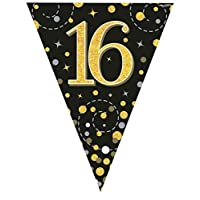 Hi Fashionz 16th Black Gold Sparkling Fizz Birthday Party Holographic Bunting 11 Flags 3.9m Ages